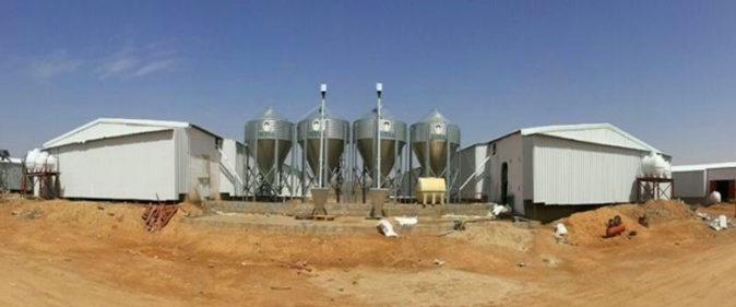 Al Malhan Poultry farm, Саудовская Аравия