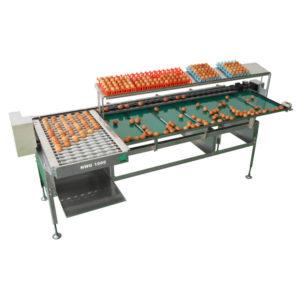 Яйцесортувальна машина Nabel NWG 1000 (10 000 яєць/ година)
