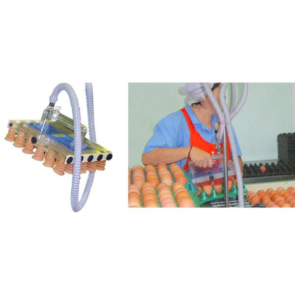 Яйцесортировальная машина Nabel NWG 1000 (10 000 яиц/ час)