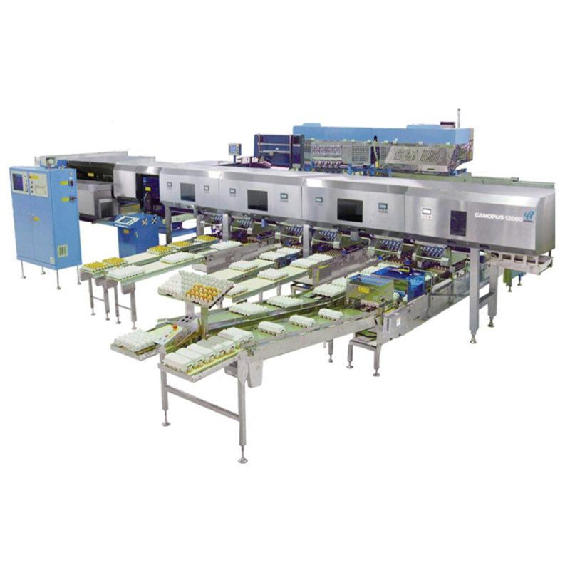 Яйцесортувальна машина Nabel Canopus 4 000 (40 000 яєць/ година)