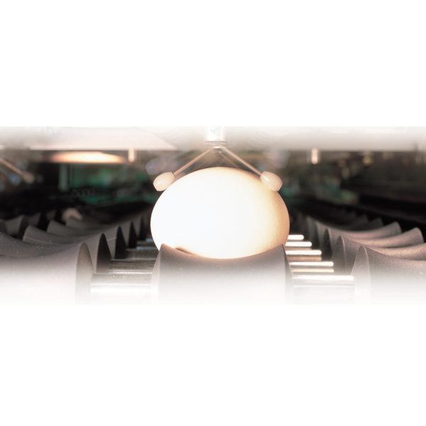 Автоматический детектор трещин и насечки (ACD детектор)